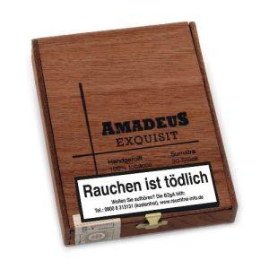 Amadeus Exquisit Sumatra [1 x 20] online kaufen